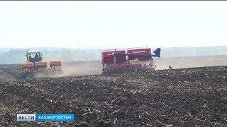 Башкортостану выделят 802 млн рублей на поддержку фермеров