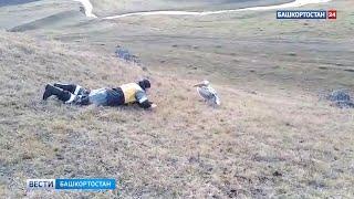 Пеликаны облюбовали Баймакский район Башкирии