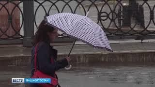 Холодно и дождливо: в республике вновь ухудшится погода
