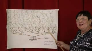 (ЮЗ-2020) В рамках рубрики «Беҙҙең тамырҙарыбыҙ» встреча с семьей Аксановых