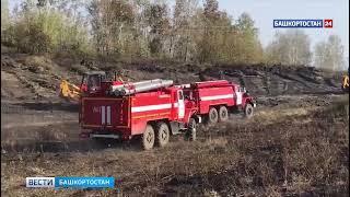 В районах Башкирии горят леса на общей площади более 1500 гектар