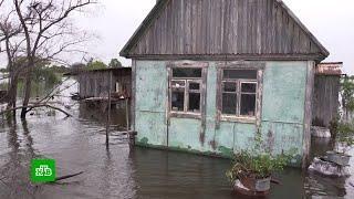 Срочная эвакуация: тихоокеанские тайфуны осложнили ситуацию в Приморье