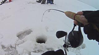 В погоне за ЗИМОЙ! Рыбалка со льда на слиянии Волги и Камы