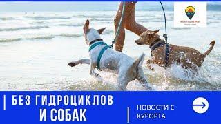Никаких собак и гидроциклов: новые правила для пляжей в России