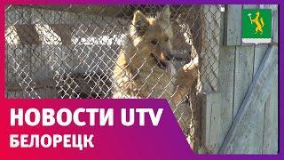 UTV. Новости Белорецкого района от 19.06.2020