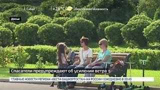МЧС Башкирии предупреждает об усилении ветра