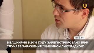"""Новости UTV. В 2019 году 1596 жителей Башкирии заболели """"мышиной лихорадкой"""""""