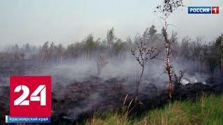 Число задымленных из-за пожаров населенных пунктов в Сибири и на Дальнем Востоке снизилось - Росси…