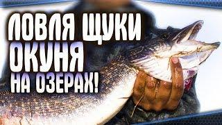 Ловля голавля, ловля щуки, ловля окуня на озерах Башкирии