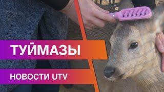 Новости Туймазинского района 21.10.2020