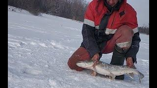 Зимняя рыбалка на жерлицы 2020 ❌  Рыбалка в Башкирии
