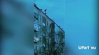 Дети ходят по краю крыши