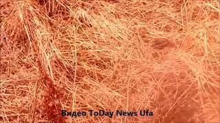 6-летний ребенок утонул в котловане в селе Верхние Киги