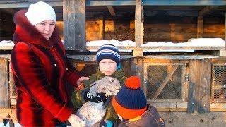 Жители Башкирии могут претендовать на дополнительную денежную помощь от государства