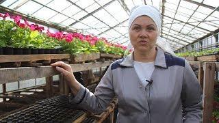 Как живут женщины в единственной в Башкирии женской колонии-поселении
