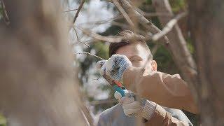 UTV. На субботнике в Нагаево Уфимского района жители высадили хвойную аллею