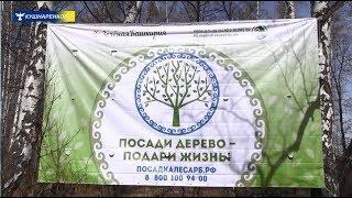 """""""Зелёная Башкирия"""" """"Посади дерево - подари жизнь"""" 27 апреля 2019 год с Султанаево"""