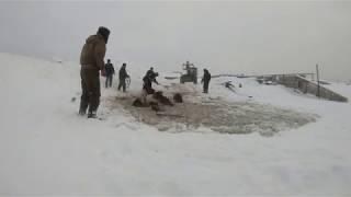В Башкирии семь лошадей провалились под лёд