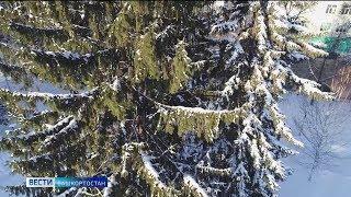 В Башкирии поставили очередной температурный рекорд