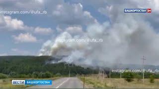 Десятки пожарных и добровольцев вторые сутки борются с огнем, охватившим хвойный лес в Башкирии
