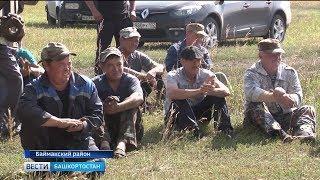 В Баймакском районе перед хлеборобами в полях выступает агитбригада
