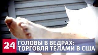 Отрезанные головы в ведрах: ФБР вскрыло масштабную торговлю человеческими останками - Россия 24