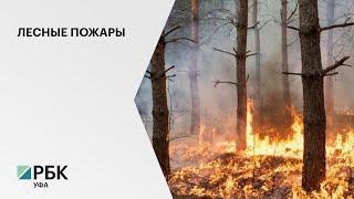 Вторые сутки тушат крупный лесной пожар в Белорецке