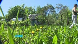 В Уфе прошел первый съезд садоводов и огородников