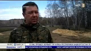 В Башкирии от огня пострадало 275 гектаров лесного фонда