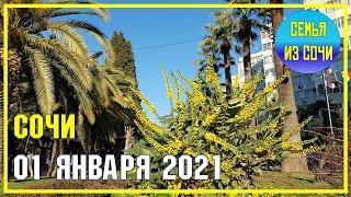 СОЧИ | 1 ЯНВАРЯ 2021 | ПРОГУЛКА ПО НАБЕРЕЖНОЙ | Субтропический рай в отдельно вазятом городе