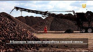 Новости UTV. Новостной дайджест Уфанет (Давлеканово, Раевский) за 18 января