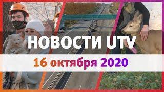 Новости Уфы и Башкирии 16.10.2020: спасение кота и косули, новый участок федеральной трассы