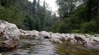 Горные реки Южного Урала - река Реветь || mountain river Revet. Southern Urals