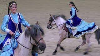 Башкирская порода лошадей Конная выставка ИППОсфера /Выставка лошадей HIPPOsphere /Башкирская лошадь