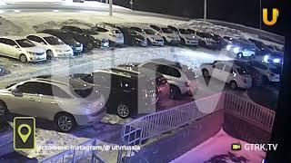 Полицейскому пришлось отбиваться дубинкой от стаи дворняг в Уфе - видео