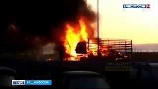На трассе М-7 под Уфой дотла сгорел грузовик