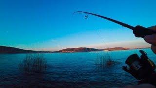 Рыбалка 2019 на спиннинг в ЗАПРЕТ возможна!!! Ловля окуня на отводной поводок.