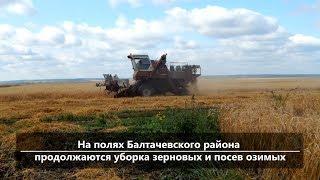 UTV. Новости севера Башкирии за 28 августа (Нефтекамск, Янаул, Дюртюли, Аскино)