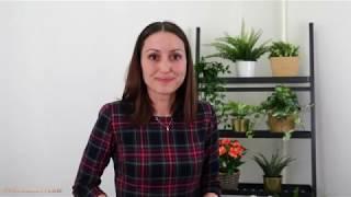Диана Штаб за хроническа алергия при дете