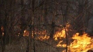 В амурском селе сгорело 11 домов