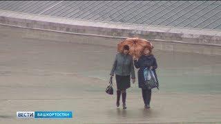 В Башкирии пройдут дожди с грозами