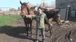 UTV. Новости Бураевского района и севера Башкирии за 9 октября