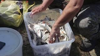 MVI 0110 Рыбалка в Башкирии 05.05.19