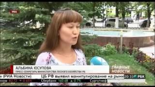 Минлесхоз Башкортостана выставил на торги 18 лесных участков - РБК Уфа (25.08.2016)