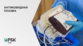 В РБ 30 человек сдали антиковидную плазму для лечения пациентов от коронавируса
