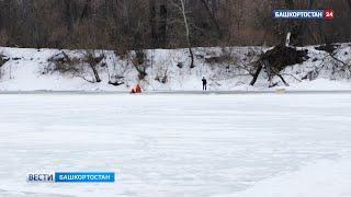 В Уфе спасли собаку, провалившуюся в полынью: ВИДЕО