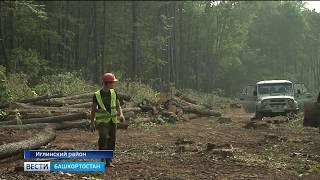Лесхозы Башкирии получили первую партию новых спецмашин