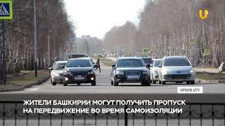 Новости UTV. Пропуск на передвижение во время самоизоляции
