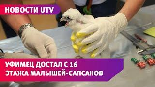 UTV. Неравнодушный уфимец помог орнитологам достать с 16 этажа маленьких сапсанов