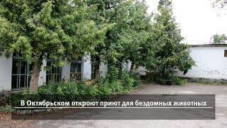 UTV. Новости запада Башкирии за 29 августа